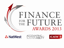 Finance for the Future awards 2013